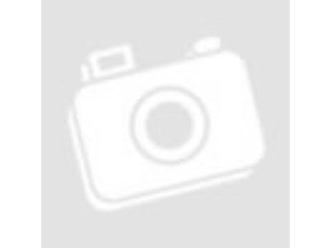 Hogyan gondoskodjunk az idős kutyánkról?